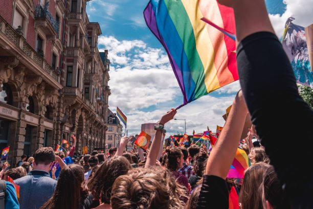 LGBT+ flags in a parade